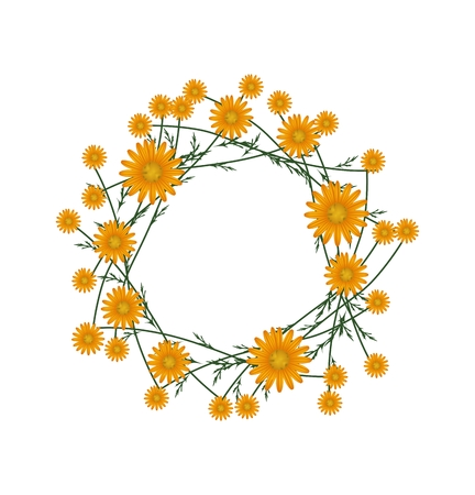 asteraceae: Symbol of Love, Illustration of Crown or Laurel Wreath of Fresh Orange Daisy Flowers Isolated on White Background.