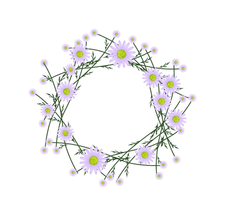 florescence: Symbol of Love, Illustration of Crown or Laurel Wreath of Fresh Violet Daisy Flowers Isolated on White Background.