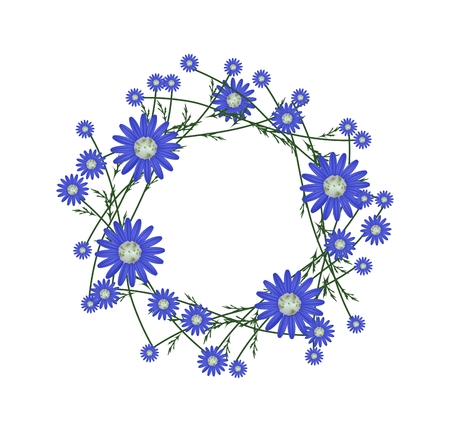 osteospermum: Symbol of Love, Illustration of Crown or Laurel Wreath of Fresh Blue Daisy Flowers Isolated on White Background.