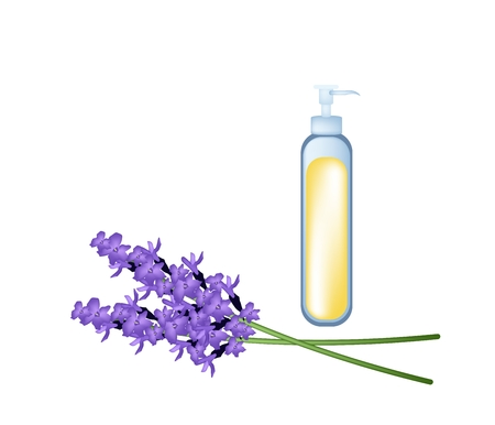 essential: Illustration of Purple Lavender Flowers with Essential Oil Isolated on Transparent Background.