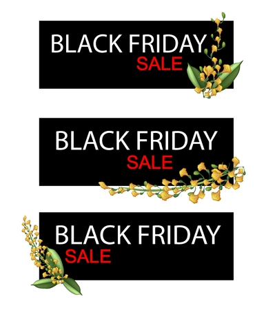 fistula: Illustration of Padauk Flowers or Papilionoideae Flowers on Black Friday Shopping Banner for Start Christmas Shopping Season.
