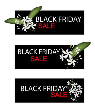annonaceae: Illustration of Gardenias or Cape Jasmine Flowers on Black Friday Shopping Banner for Start Christmas Shopping Season.