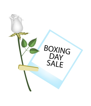 boxing day: Boxing Day Shopping Banner Instant Photo Prints with White Rose Clothespins, Sign for Start Christmas Shopping Season. Illustration