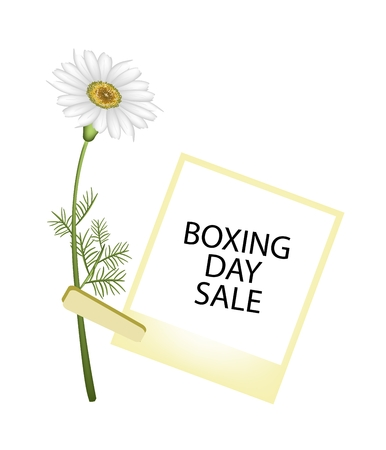 boxing day special: Boxing Day Shopping Banner Instant Photo Prints with White Daisy Clothespins, Sign for Start Christmas Shopping Season. Illustration
