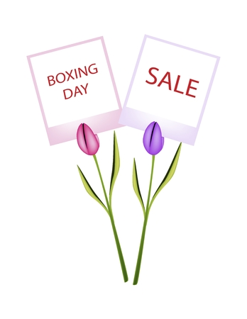 boxing day: Boxing Day Shopping Banner Instant Photo Prints with Tulips Clothespins, Sign for Start Christmas Shopping Season.
