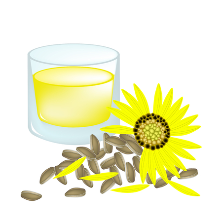 golden daisy: Beautiful Flower, Illustration Glass of Sunflower with Oil and Seeds Isolated on A White Background.