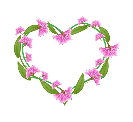 myrtle: Love Concept, Illustration of Pink Crape Myrtle Flowers or Lagerstroemia Indica Flowers Forming in Heart Shape Isolated on White Background.