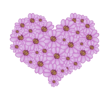 millefolium: Love Concept, Illustration of Violet Yarrow Flowers or Achillea Millefolium Flowers Forming in Heart Shape Isolated on White Background.