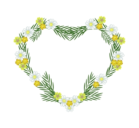 milfoil: Love Concept, Illustration of White and Yellow Yarrow Flowers or Achillea Millefolium Flowers Forming in Heart Shape Isolated on White Background. Stock Photo