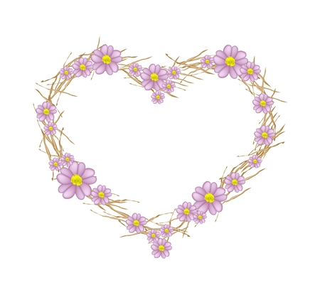 asteraceae: Love Concept, Illustration of Purple Yarrow Flowers or Achillea Millefolium Flowers Forming in A Heart Shape Isolated on White Background. Stock Photo