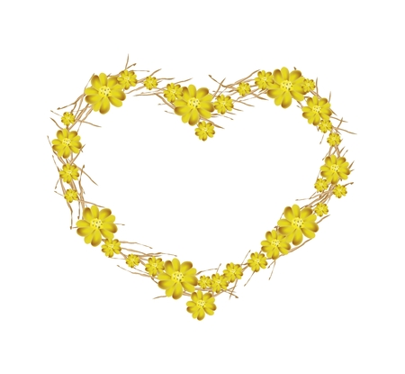 millefolium: Love Concept, Yellow Yarrow Flowers or Achillea Millefolium Flowers Forming in A Heart Shape Isolated on White Background.