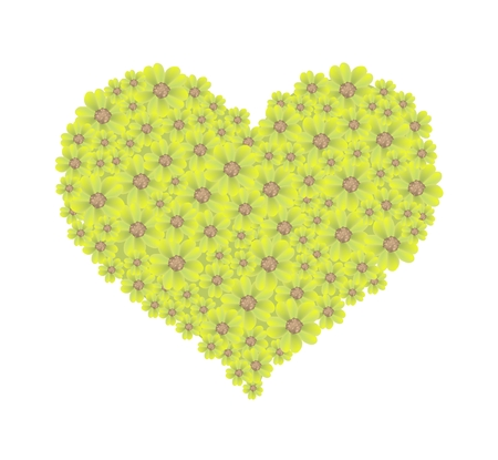 millefolium: Love Concept, Illustration of Yellow Yarrow Flowers or Achillea Millefolium Flowers Forming in Heart Shape Isolated on White Background.