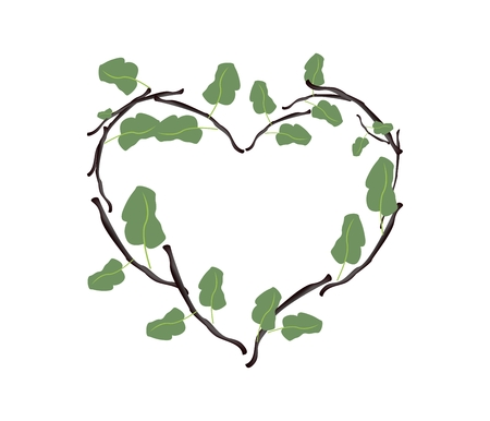 twigs: Love Concept, Illustration of Heart Shape Wreath Made of Fresh Green Leaves and Brown Twigs Isolated on A White Background. Illustration