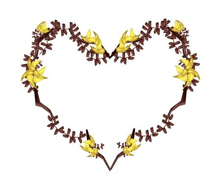 teak: Love Concept, Illustration of Yellow Bastard Teak Flowers or Butea Monosperma Flowers Forming in Heart Shape Isolated on White Background. Illustration