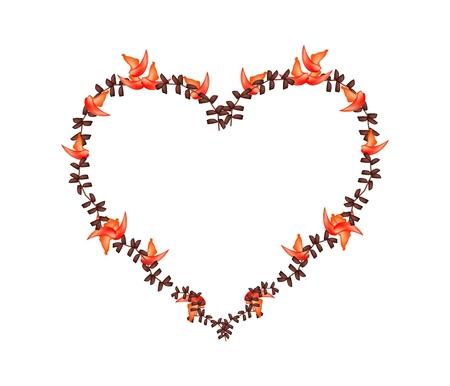 teak: Love Concept, Illustration of Red Bastard Teak Flowers or Butea Monosperma Flowers Forming in Heart Shape Isolated on White Background. Illustration
