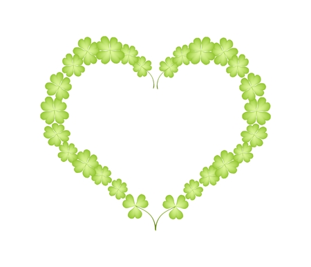 cloverleafes: Love Concept, Illustration of Four Leaf Clover or Shamrock Plants Forming in A Beautiful Heart Shape Isolated on White Background.