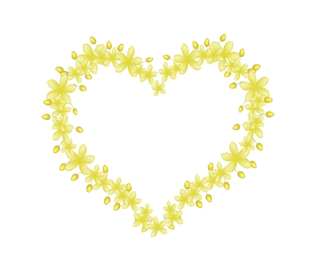 fistula: Love Concept, Illustration of Yellow Cassia Fistula or Golden Shower Flowers Forming in Heart Shape Isolated on White Background. Illustration