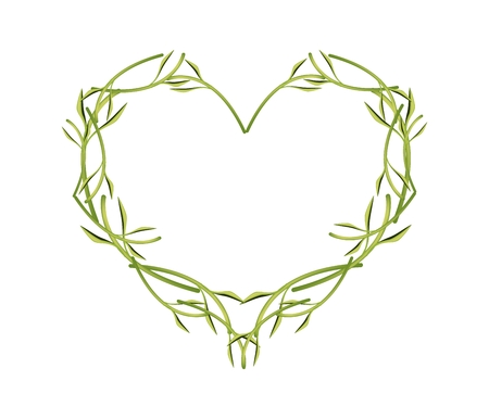 a twig: Love Concept, Illustration of Green Leaves and Twig Forming in Heart Shape Isolated on White Background. Illustration
