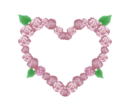 bower: Love Concept, Illustration of Pink Glory Bower Flowers or Clerodendrum Chinense Flowers Forming in Heart Shape Isolated on White Background.