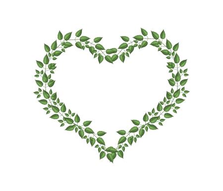 love shape: Love Concept, Illustration of Heart Shape Frame Made of Fresh Green Vine Leaves Isolated on White Background. Stock Photo