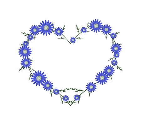 osteospermum: Love Concept, Illustration of Fresh Blue Daisy Flowers Forming in Heart Shape Isolated on White Background. Illustration