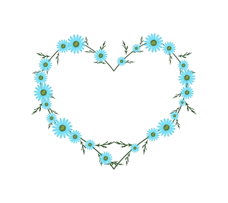osteospermum: Love Concept, Illustration of Fresh Light Blue Daisy Flowers Forming in Heart Shape Isolated on White Background.