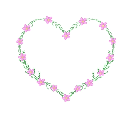 millefolium: Love Concept, Illustration of Pink Yarrow Flowers or Achillea Millefolium Flowers Forming in A Heart Shape Frame Isolated on White Background. Illustration