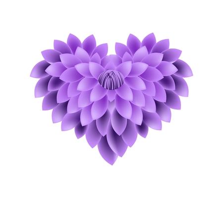 violeta: El concepto de amor, violeta Ilustración de la dalia flores que se forman en forma de corazón aislada en el fondo blanco.