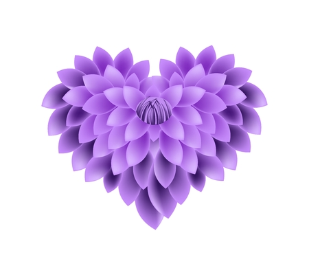 violet: Love Concept, Illustration of Violet Dahlia Flowers Forming in Heart Shape Isolated on White Background.