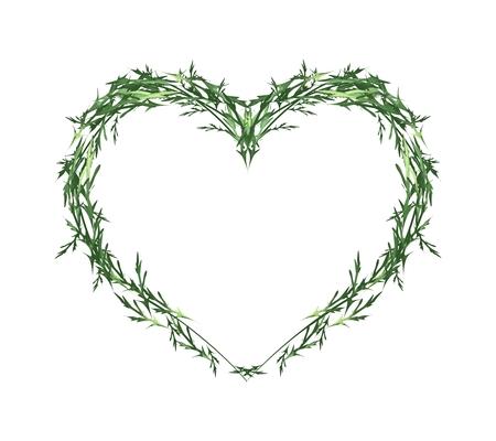 Liefde Concept, illustratie van groene bladeren vormen in mooie hartvorm die op een witte achtergrond.