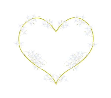 tree jasmine: Love Concept, Illustration of White Indian Cork Flowers or Millingtonia Hortensis Flowers Forming in Heart Shape Isolated on White Background.