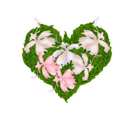 stamen: Love Concept, Illustration of Pink Hibiscus Flowers or Pink Rose Mallow Flowers Forming in Heart Shape Isolated on White Background. Illustration