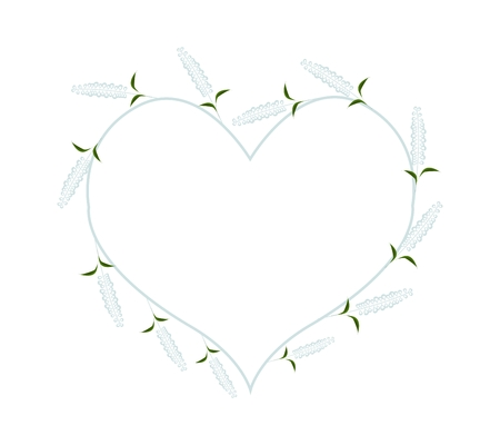 sage: Love Concept, Illustration of White Sage Flowers or Salvia Flowers Forming in Heart Shape Isolated on White Background.