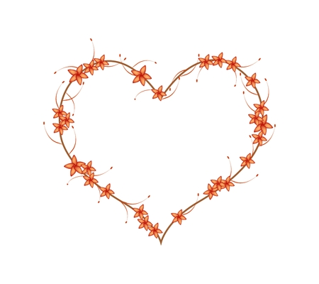 red bush: Love Concept, Illustration of Red Bush Willow Flower or Combretum Erythrophyllum Flowers Forming in Heart Shape Isolated on White Background.