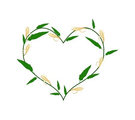 silhouette fleur: Amour, Illustration de jaune Michelia Alba Fleurs ou Michelia Champaca Fleurs Formant en forme de coeur isolé sur fond blanc.