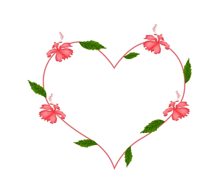 stamen: Love Concept, Illustration of Red Hibiscus Flowers or Red Rose Mallow Flowers Forming in Heart Shape Isolated on White Background.