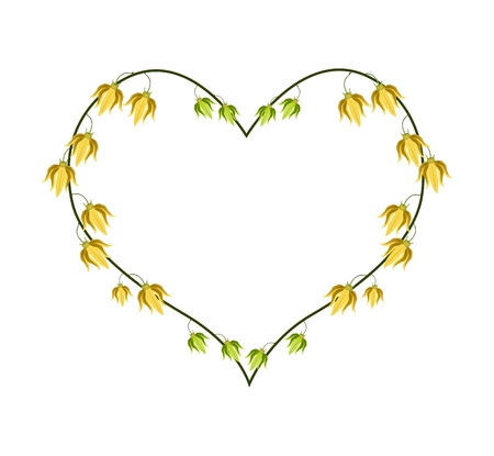 annonaceae: Love Concept, Illustration of Yellow Color of Ylang-Ylang Flowers Forming in Heart Shape Isolated on White Background. Illustration