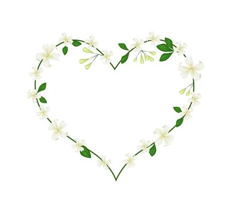 jessamine: Amore concetto, illustrazione di Orange Jessamine o Mock Orange fiori che formano a forma di cuore isolato su sfondo bianco. Vettoriali