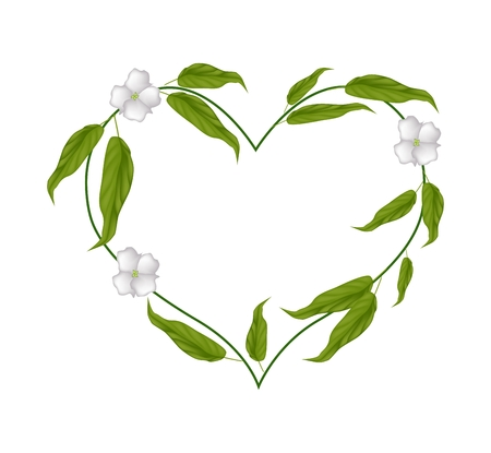 myrobalan: Love Concept, Illustration of Heart Shape with Chebulic Myrobalan with Leaves and Blossoms Isolated on White Background.