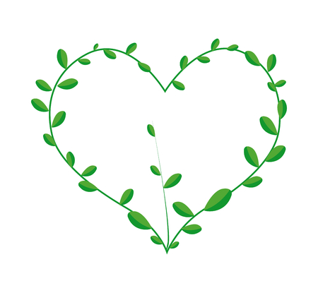 vine leaves: Love Concept, Illustration of A Heart Shape Frame Made of Fresh Green Vine Leaves Isolated on A White Background.