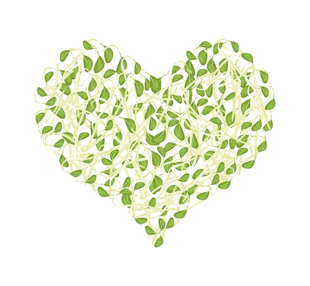 mung bean sprout: Love Concept, Illustration of Green Sprout Beans Forming in Heart Shape Isolated on White Background.
