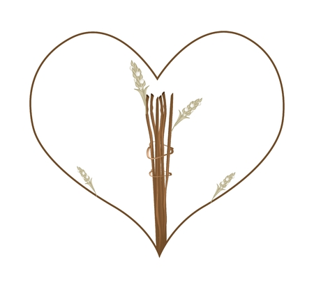 dry flowers: Love Concept, Illustration of Dry Flowers and Leaves Forming in Heart Shape Isolated on White Background. Illustration