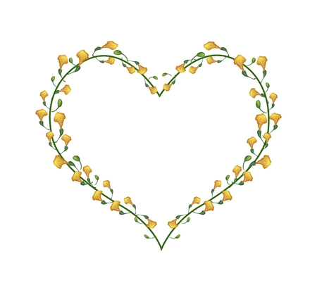 fistula: Love Concept, Illustration of Padauk Flowers or Papilionoideae Flowers Forming in Heart Shape Isolated on White Background.
