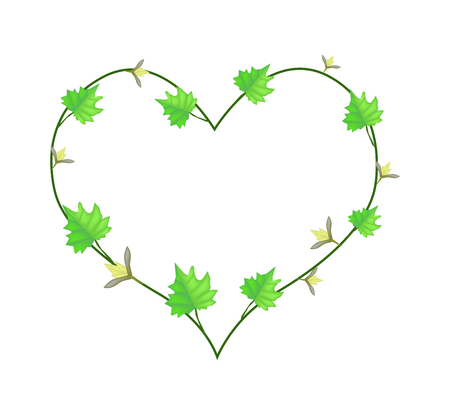 vine leaves: Love Concept, Illustration of Heart Shape Frame Made of Fresh Green Vine Leaves and Yellow Blossoms Isolated on A White Background.