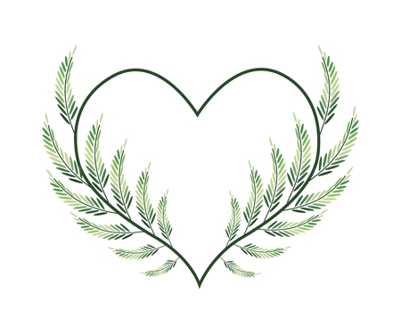 leafy: Love Concept, Illustration of A Heart Shape Frame Made of Fresh Leafy Vine Leaves Isolated on White Background.