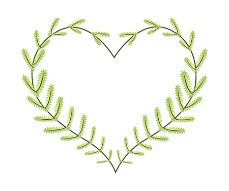 leafy: Love Concept, Illustration of A Heart Shape Frame Made of Fresh Leafy Fern Leaves Isolated on White Background.