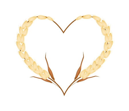 cereal plant: Love Concept, Illustration of Ripe Golden Millets Forming in Heart Shape Isolated on White Background.