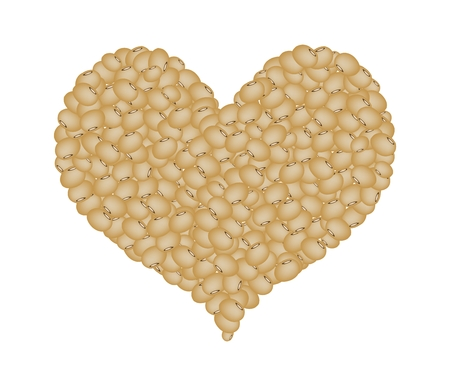 germinate: Love Concept, Stack of Dried Soy Beans Forming in A Heart Shape Isolated on A White Background Illustration
