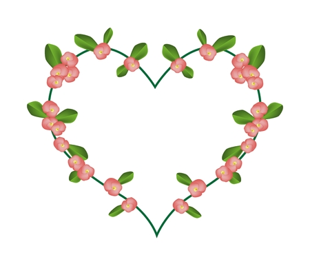 plantae: Love Concept, Illustration of Crown of Thorn or Euphorbia Milii Flowers Forming in Heart Shape Isolated on White Background.