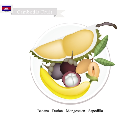 cambodian flag: Cambodian Fruits, Illustration of Delicious Mangosteens, Banana, Durian and Sapodilla. Popular Fruits in Cambodia.